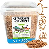 MeerBach Animal Mehlwürmer getrocknet • 5 Liter Premium Futter im Eimer • der gesunde und natürliche Snack für Fische, Reptilien, Schildkröten oder Igel