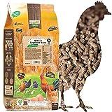 WachtelGold Hühnerfutter - 10kg Legekorn - ohne Gentechnik - für Legehennen Hühner