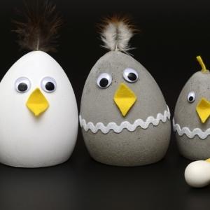 Hühnerhaltung ohne Hahn: Vor- und Nachteile